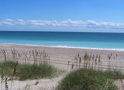 Art Print featuring the photograph Dunes On The Outerbanks by Sandi OReilly