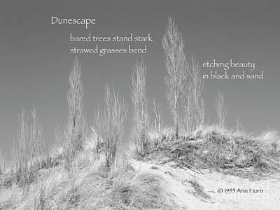 Photograph - Dunescape by Ann Horn