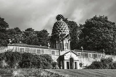 Photograph - Dunmore Pineapple. Black And White by Jenny Rainbow