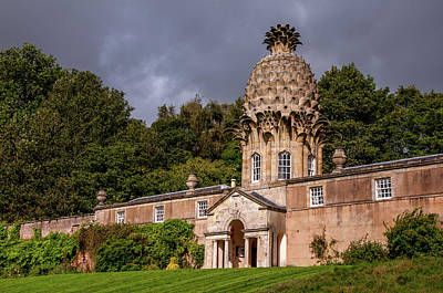 Photograph - Dunmore Pineapple by Jenny Rainbow