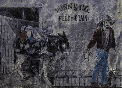 Dunn Co Feed And Grain Print by Garry Gay