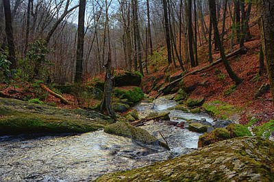 Dunnfield Creek On Nj's At Art Print by Raymond Salani III