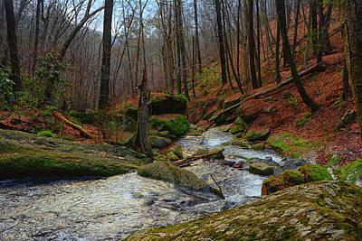 Photograph - Dunnfield Creek On Nj's At by Raymond Salani III