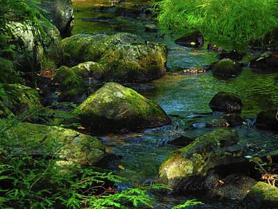 Photograph - Dunnfield Creek by Raymond Salani III