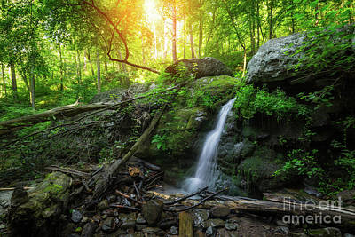 Dunnfield Creek Sunrise  Art Print