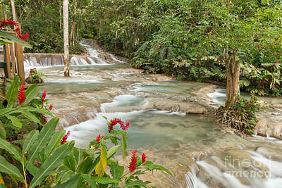 Photograph - Dunn's River Falls by Charles Kozierok