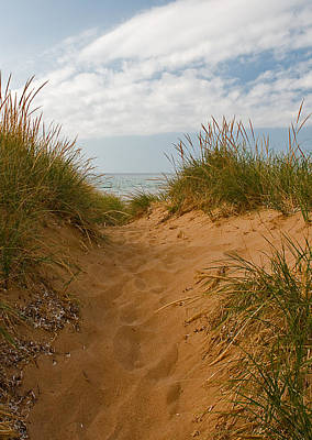 Photograph - Nova Scotia's Cabot Trail Dunvegan Beach Dunes by Ginger Wakem