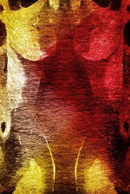 Painter Digital Art - Duplicity by Andrea Barbieri