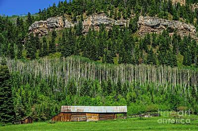 Photograph - Durango by Stephen Whalen