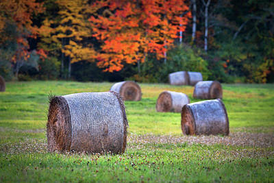 Hay October Photograph - Durham Autumn Harvest by Eric Gendron