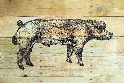 Drawing - Duroc   Boar by Larry Campbell