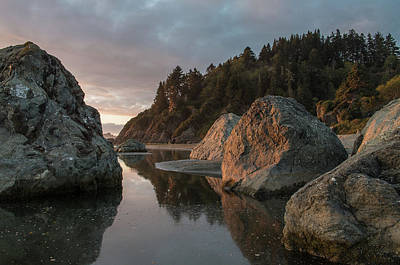 Photograph - Dusk Among Little River Sea Stacks by Greg Nyquist