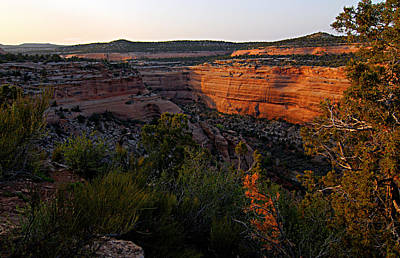 Photograph - Dusk At Colorado National Monument by Larry Ricker