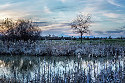 Photograph - Dusk At The Pond by Belinda Greb