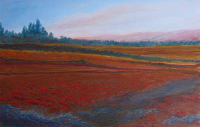 Dusk Falls On The Pumice Field Print by Jenny Armitage