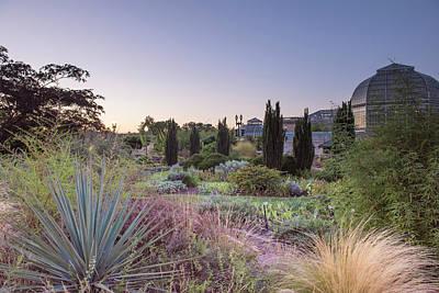 Landscapes Kadek Susanto - Dusk Garden by Amanda Kleinman