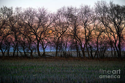 Supermoon Photograph - Dusk Hues by Ian McGregor