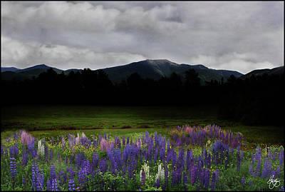Photograph - Dusk On The Franconia Range by Wayne King