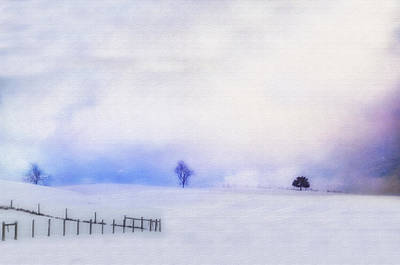 Dusky Snow Art Print by Kathy Jennings