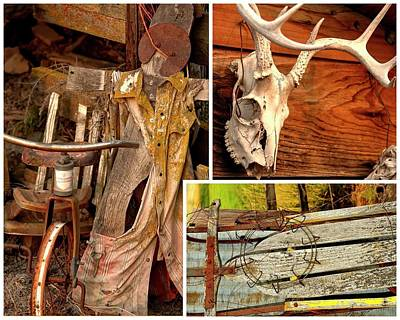 Photograph - Duster Antlers Sled by Jerry Sodorff