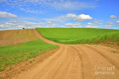 Photograph - Dusty Roads by Mike Dawson