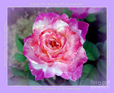 Photograph - Dusty Rose Heart by Marlene Rose Besso
