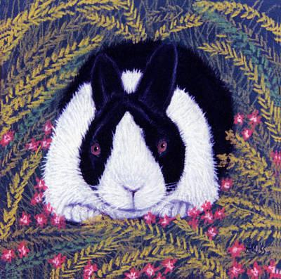 Pastel - Dutch Bunny by Jan Amiss