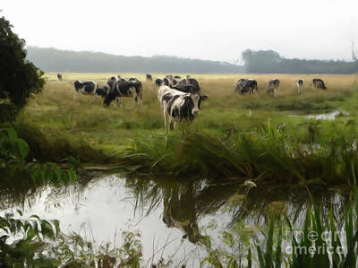 Dutch Cows Art Print by Jan Daniels