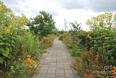 Photograph - Dutch Garden Path by Carol Groenen