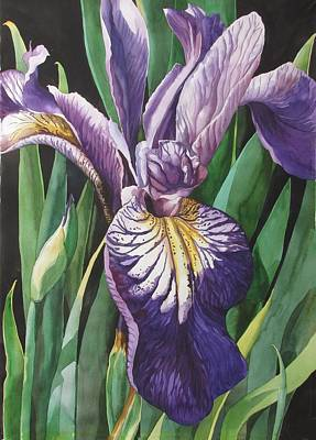 Painting - Dutch Iris by Alfred Ng