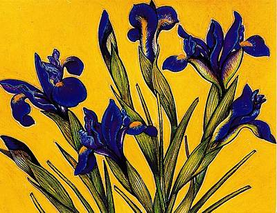 Pastel - Dutch Iris by Richard Lee
