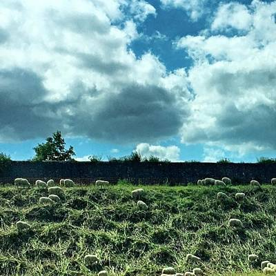Dutch Photograph - Dutch Landscape ... #dutch #landscape by Maritha Graph