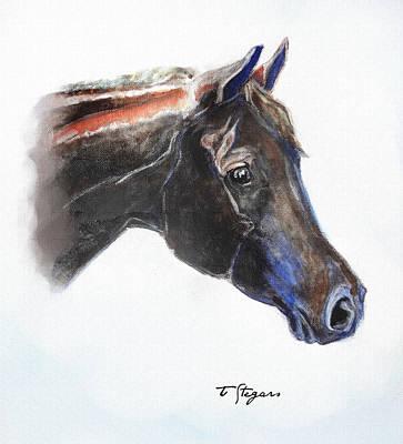 Wall Art - Painting - Dutch Pony Head by Tarja Stegars