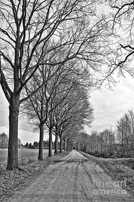 Photograph - Dutch Road In Winter Black And White by Carol Groenen