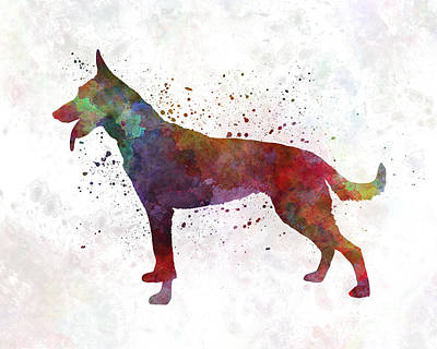 Dutch Shepherd Dog In Watercolor Print by Pablo Romero