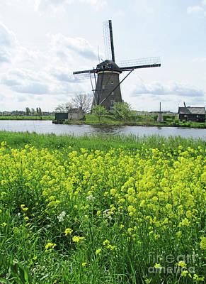 Photograph - Dutch Windmills 41 by Randall Weidner