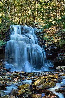 Photograph - Dutchman Falls Lower Tier 1 Loyalsock State Forest by Joel E Blyler