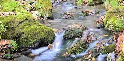 Photograph - Duttons Creek by Bonfire Photography