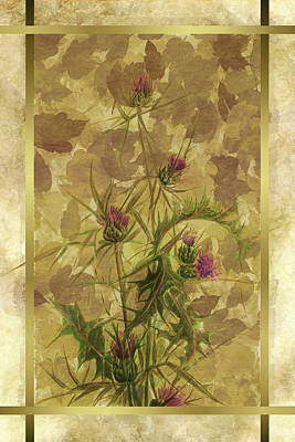 Photograph - Duvet Thistle by Robert G Kernodle