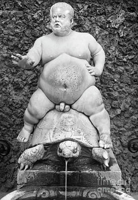 Photograph - Dwarf On Turtle by Granger