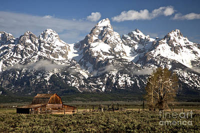 Dwarfed By The Teton Mountain Ange Art Print by Adam Jewell