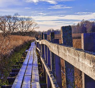 Photograph - Dyarna Path  by Leif Sohlman