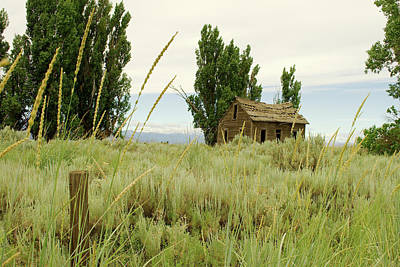 Photograph - Dyer Country Home by Troy Stapek