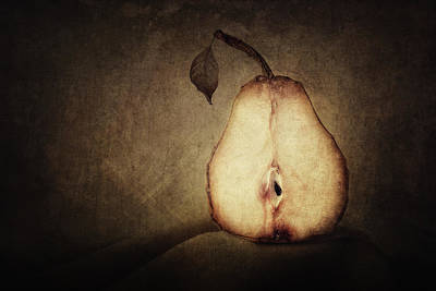 Ripe Photograph - Dying Inside by Amy Weiss