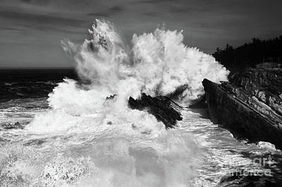 Force Of Nature Photograph - Dynamic Nature by Bob Christopher