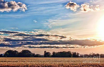 Photograph - Dynamic Wheat Field by Erica Hanel