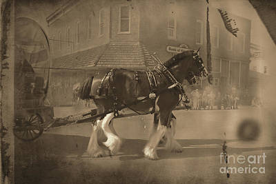 Photograph - E And S Clydesdales Black And White by David Arment