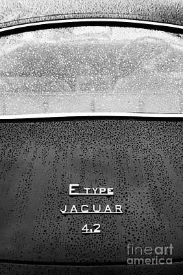 Photograph - E Type In The Rain by Tim Gainey