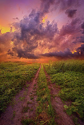 Photograph - Each Day With A Single Breath by Phil Koch