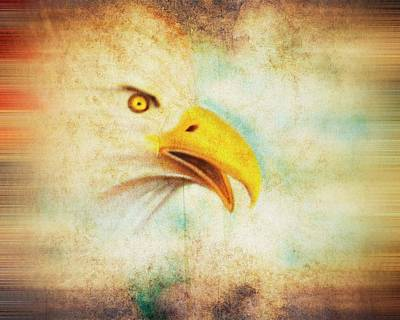 Digital Art - Eagle 1 Of 7 Images  by Walter Herrit